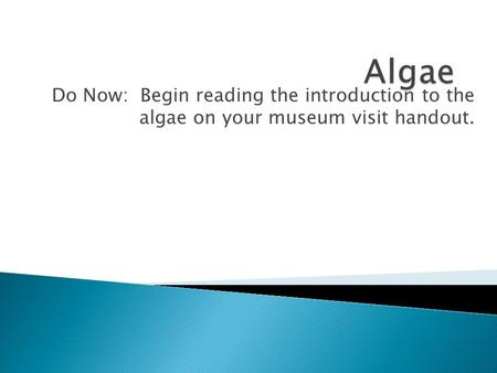 Do Now: Begin reading the introduction to the algae on your museum visit handout.