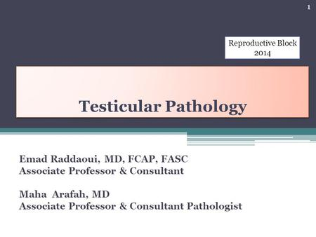 Testicular Pathology Emad Raddaoui, MD, FCAP, FASC Associate Professor & Consultant Maha Arafah, MD Associate Professor & Consultant Pathologist 1 Reproductive.