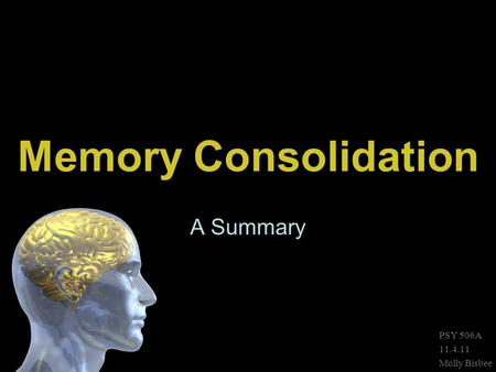 Memory Consolidation A Summary PSY 506A 11.4.11 Molly Bisbee.