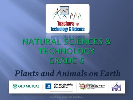 NATURAL SCIENCES & TECHNOLOGY GRADE 5