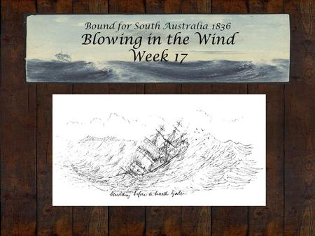 Bound for South Australia 1836 Blowing in the Wind Week 17 Sunday before a hard gale. Edward Snell, 1849.