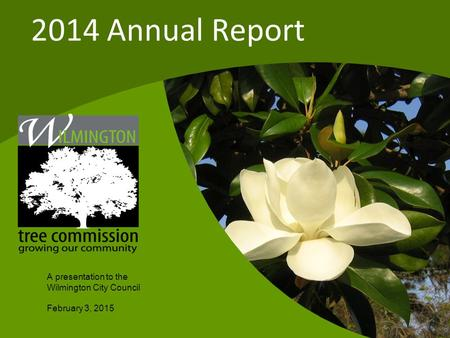 A presentation to the Wilmington City Council February 3, 2015 2014 Annual Report.