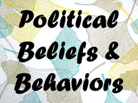 Political Beliefs & Behaviors. Public Opinion Definition : how people think or feel about particular things – Issues – Candidates – Political institutions.