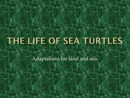 Adaptations for land and sea.
