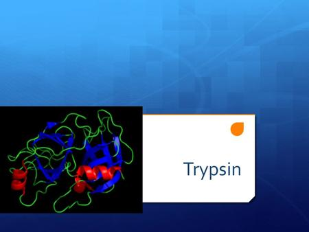 Trypsin. Intro  Trypsin is a serine protease found in the digestive system of many vertebrates, where it hydrolyses proteins.  Trypsin is produced in.