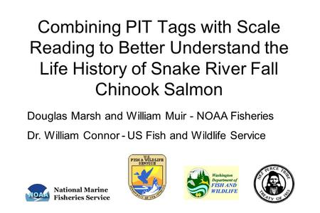 Combining PIT Tags with Scale Reading to Better Understand the Life History of Snake River Fall Chinook Salmon Douglas Marsh and William Muir - NOAA Fisheries.