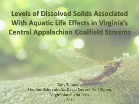 Levels of Dissolved Solids Associated With Aquatic Life Effects in Virginia's Central Appalachian Coalfield Streams Tony Timpano Stephen Schoenholtz, David.