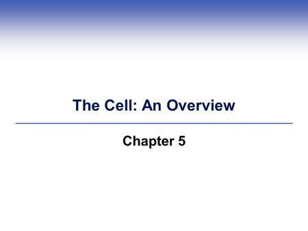 The Cell: An Overview Chapter 5. Cell Theory: Fundamental to Life  All organisms are cellular  Cell: the smallest unit of life  Cells come only from.