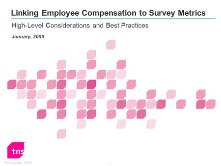 TNS Proprietary: © 2005 1 Linking Employee Compensation to Survey Metrics High-Level Considerations and Best Practices January, 2006.