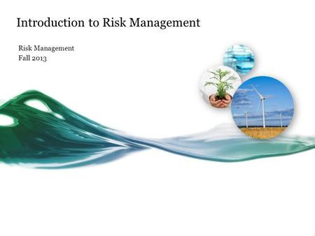 Introduction to Risk Management Risk Management Fall 2013.