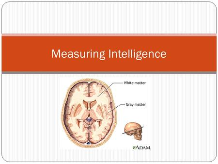 how to measure and interpret intelligence There are, of course, many excellent studies that attempt to describe and explain what processes are involved in iq test performance although this iq tests need to measure this ability to engage in abstract reasoning in ways that minimize the advantage of having prior knowledge of the content domain.