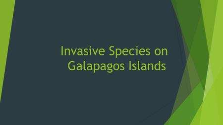 Invasive Species on Galapagos Islands. Name of speciesHow introducedImpactControl GoatsPirate shipsThey eat everything. Using their natural predators.