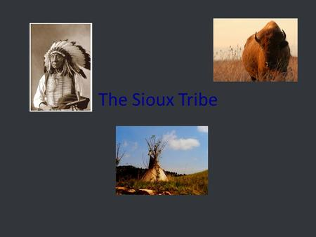 The Sioux Tribe. The Sioux house The Sioux were living on the edge of the Eastern Woodlands. But were forced into the Plains by Europe. They wanted to.