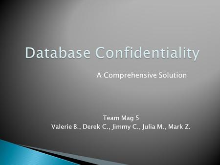 A Comprehensive Solution Team Mag 5 Valerie B., Derek C., Jimmy C., Julia M., Mark Z.