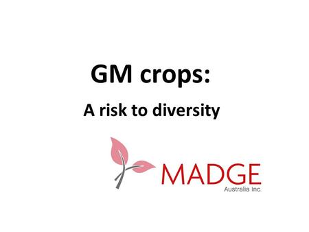 GM crops: A risk to diversity. Who owns seed? In 1970's no company owned 1% of the market In 2006 top 10 companies owned 57% of world seed