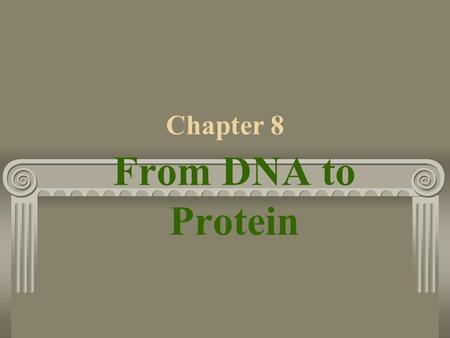 Chapter 8 From DNA to Protein. 8-2 DNA Structure 3 understandingsGenes 1. Carry information for one generation to the next 2. Determine which traits are.