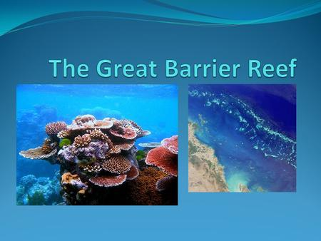 Facts The Great Barrier Reef is the worlds largest coral reef system. Stretching 2300 kilometers, this natural icon is so large it can even be seen from.