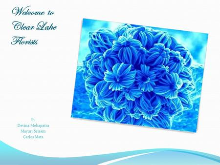 Welcome to Clear Lake Florists By Devina Mohapatra Mayuri Sriram Carlos Mata.