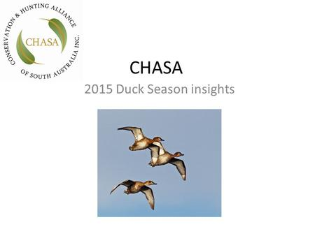 CHASA 2015 Duck Season insights. The Eastern Australia Waterbird Survey 2014 (Porter et al 2014) has recorded the lowest breeding index and dry conditions.