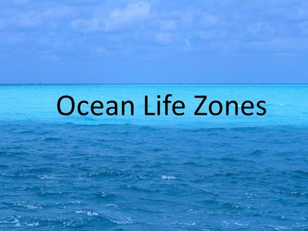 Ocean Life Zones. Foldable Front Cover Fold Paper in Half Hamburger Style Cut along dashed lines to create 5 flaps Ocean Life Zones.