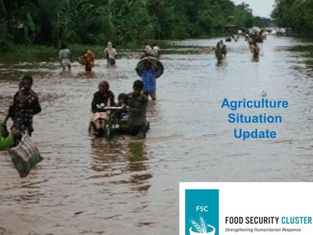 Assessment and Analysis Agriculture Situation Update.