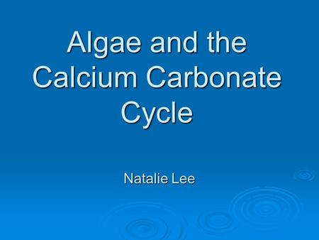 Algae and the Calcium Carbonate Cycle