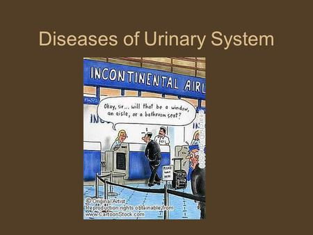 Diseases of Urinary System