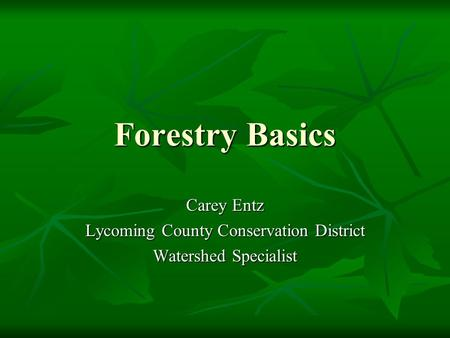 Forestry Basics Carey Entz Lycoming County Conservation District Watershed Specialist.