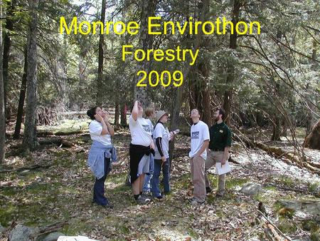 Monroe Envirothon Forestry 2009. Identifying Pennsylvania Trees Pennsylvania Forest Stewardship Program.