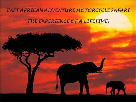 EAST AFRICAN ADVENTURE MOTORCYCLE SAFARI THE EXPERIENCE OF A LIFETIME!