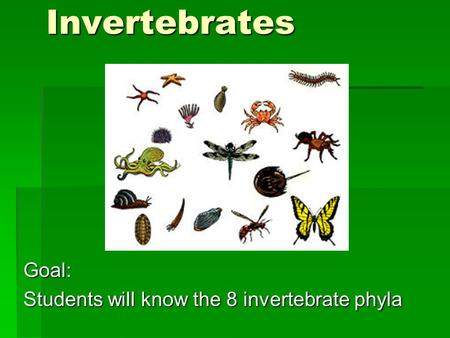 InvertebratesGoal: Students will know the 8 invertebrate phyla.