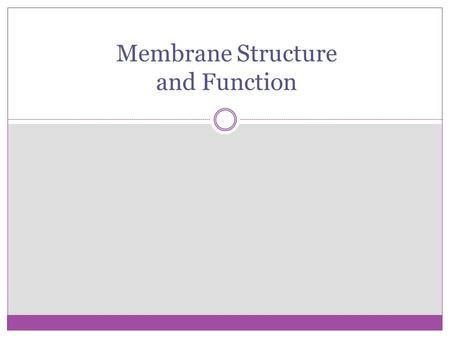 Membrane Structure and Function. Membrane Structure Plasma membrane is a boundary that separates the living cell from it's non-living surroundings. 