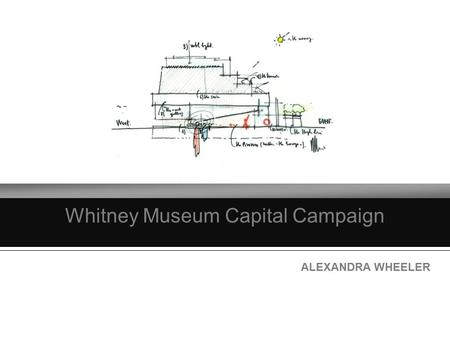 Whitney Museum Capital Campaign