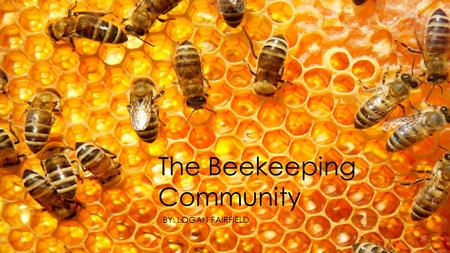 The Beekeeping Community BY: LOGAN FAIRFIELD. The Artifacts  Frames  Used to store honey and baby bees  Honey  Used to feed the hive and help last.