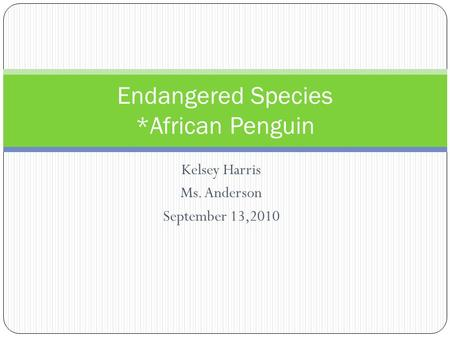 Kelsey Harris Ms. Anderson September 13,2010 Endangered Species *African Penguin.