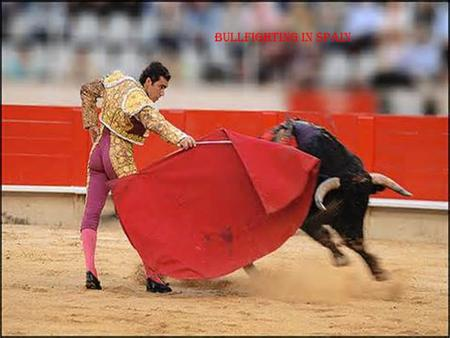 Bullfighting in Spain. Bullfighting Vocabulary Matador: It means killer and is the name for the bull fighter. Capote: The red cape worn by the bull fighter.
