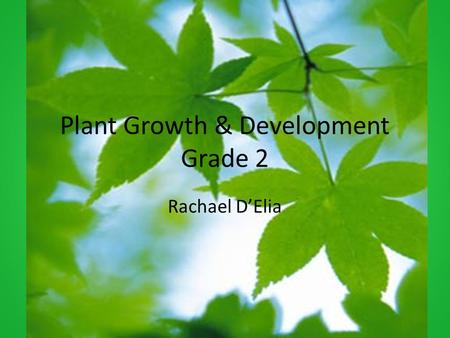 Plant Growth & Development Grade 2