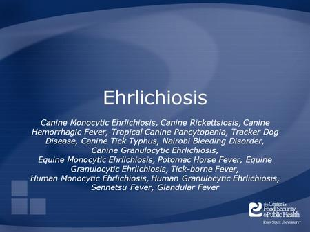 Ehrlichiosis Canine Monocytic Ehrlichiosis, Canine Rickettsiosis, Canine Hemorrhagic Fever, Tropical Canine Pancytopenia, Tracker Dog Disease, Canine Tick.