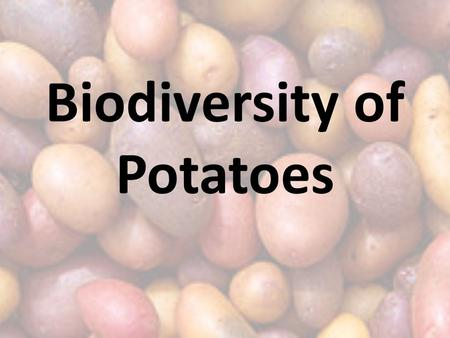 "Biodiversity of Potatoes. Review: Potato is the _____ part of a plant. The ""eyes"" are the _______ of the plant. The ""eyes"" produce _________. Texts: Animal."