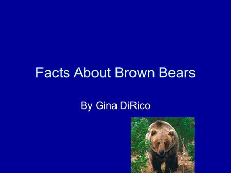 Facts About Brown Bears By Gina DiRico. In class I researched Brown Bears. If you read this you will learn about what it looks like, where it lives, how.