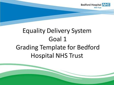 Equality Delivery System Goal 1 Grading Template for Bedford Hospital NHS Trust.