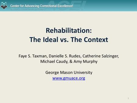 1 Rehabilitation: The Ideal vs. The Context Faye S. Taxman, Danielle S. Rudes, Catherine Salzinger, Michael Caudy, & Amy Murphy George Mason University.