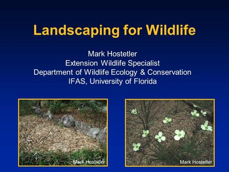 Landscaping for Wildlife Mark Hostetler Extension Wildlife Specialist Department of Wildlife Ecology & Conservation IFAS, University of Florida.