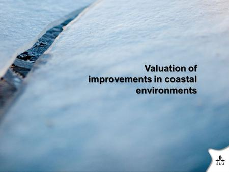 Valuation of improvements in coastal environments.