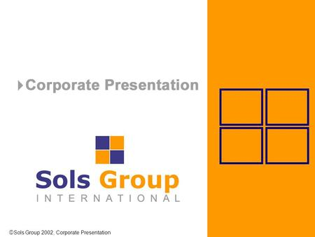  Sols Group 2002, Corporate Presentation. COMPANY PROFILE.