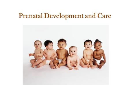 Prenatal Development and Care. Ovulation Ovulation happens each month when one of a woman's two ovaries releases a mature egg. It happens about two weeks.