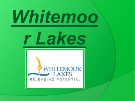 Whitemoo r Lakes. Some of the activities we did.  Challenge Course.  Canoeing.  Problem Solving.  Raft Building.  Abseiling and Zip Wire.  High.