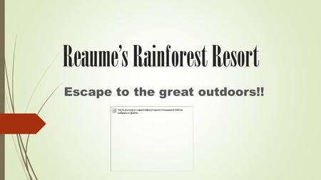 Reaume's Rainforest Resort Escape to the great outdoors!!