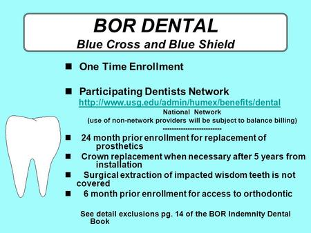 BOR DENTAL Blue Cross and Blue Shield One Time Enrollment Participating Dentists Network 