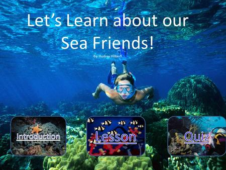 Let's Learn about our Sea Friends! By: Audrey Hilbert.
